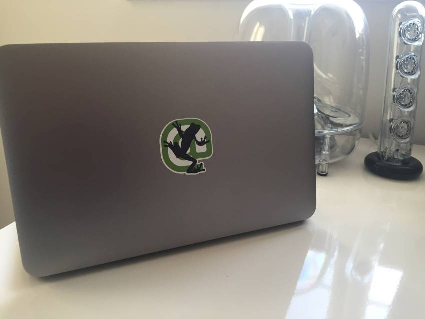 screaming frog laptop sticker