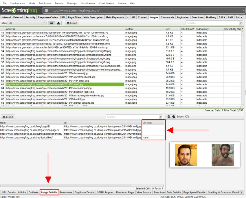 Image Details Tab To View Alt Text